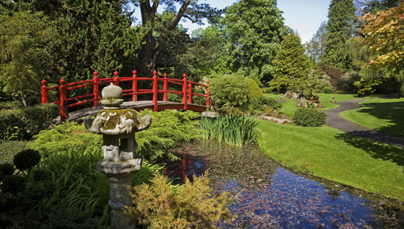 Eastern influences at the Japanese Gardens, County Kildare