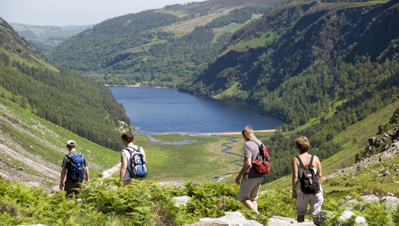 Glendalough Valley, County Wicklow